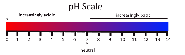 red to blue scale showing a range from 0 to 14. 0 being acidic and 14 basic. 7 in the middle is indicated as neutral