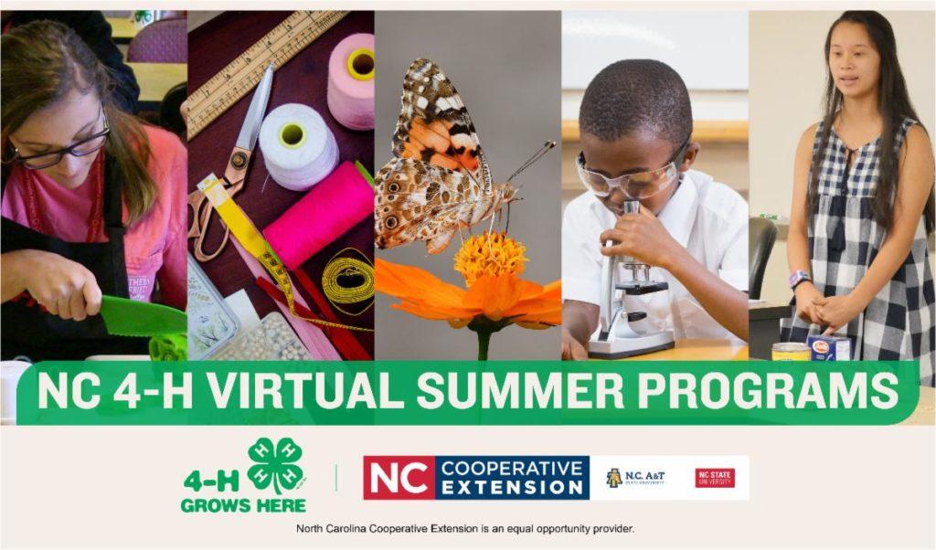 Virtual Summer Fun Programs